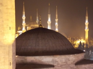 Domes and Minarets: From the terrace of our hotel.