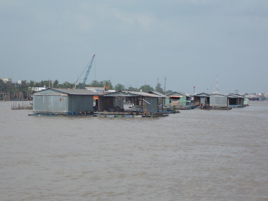 Fish farms in the middle of the Mekong River.