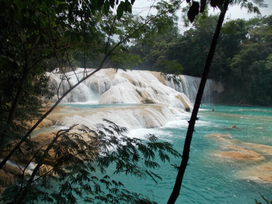 The falls at Agua Azul ... a combination of the limestone and local vegetation color the water dramatically